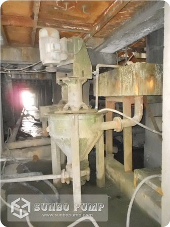 Froth Slurry Pump in flotation processing